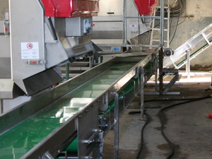 Horizontal Stalk Belt Conveyor
