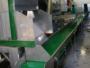 Horizontal Stalk Conveyor